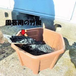 竹炭を鉢に混ぜる1